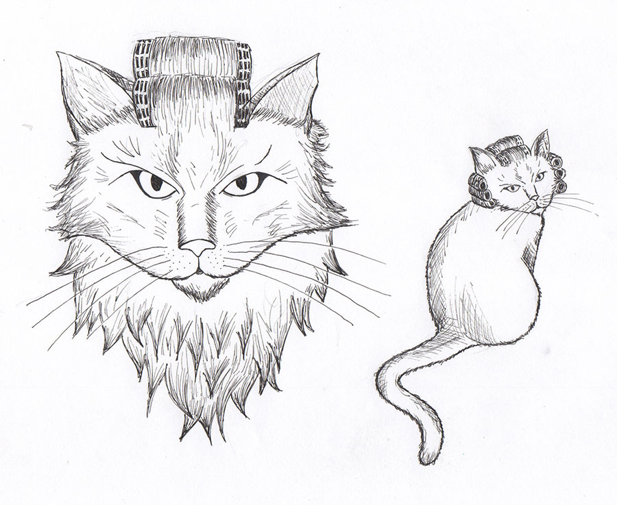 Cat with Curlers Sketch
